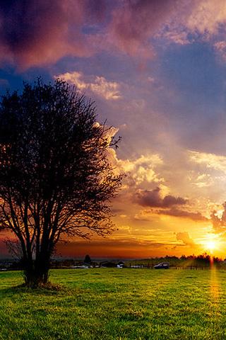 Sunset Spring