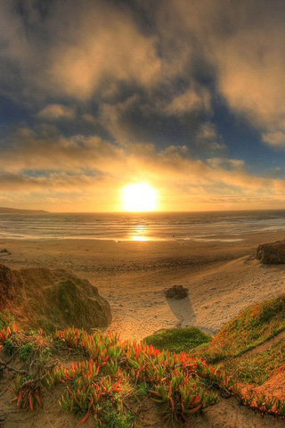 Horizon Sun