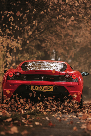 Ferrari Autumn