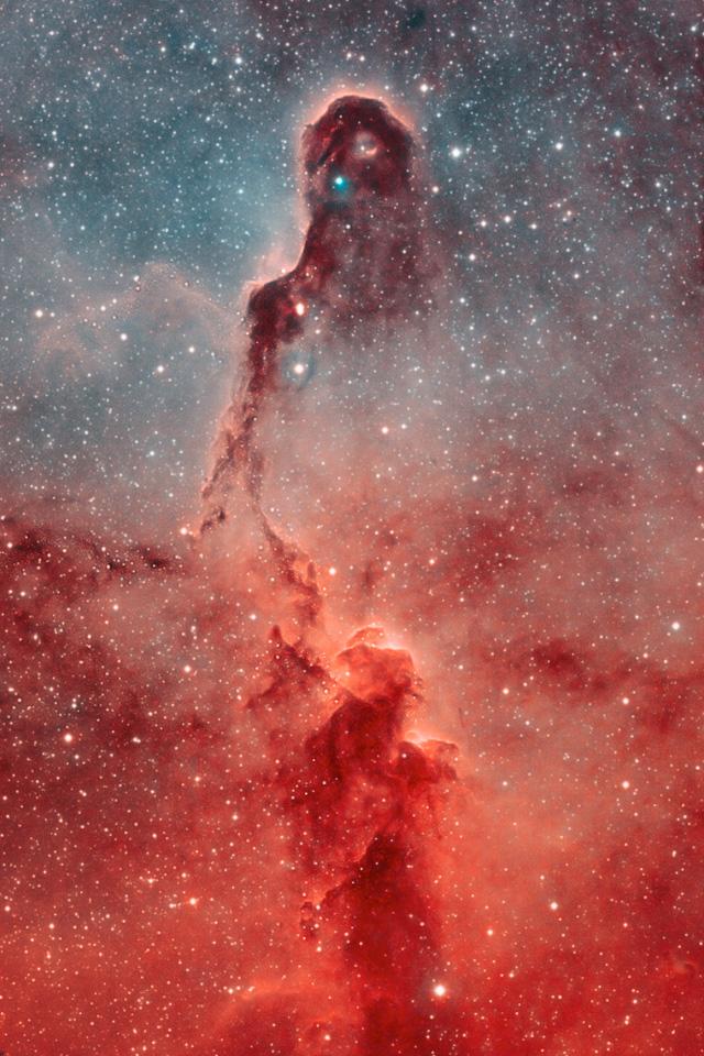 Elephant Trunk Nebula Wallpaper