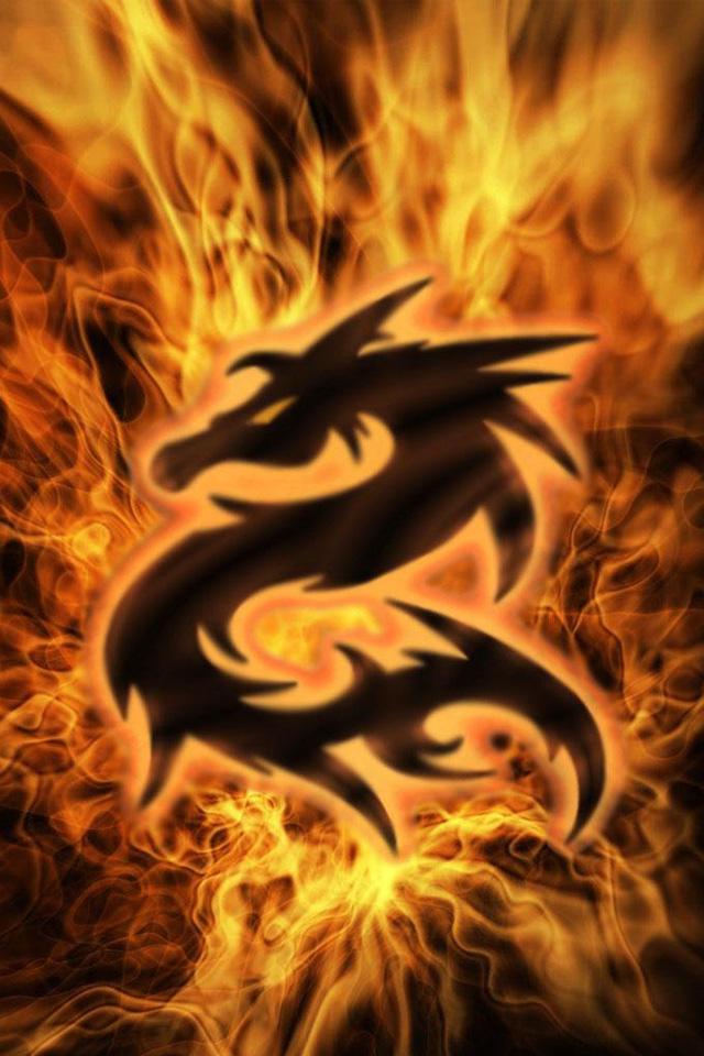 Fire Dragon Iphone Wallpaper Hd