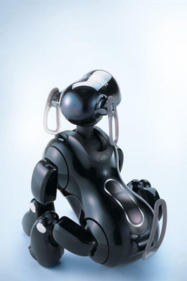 Robot Dog Wallpaper