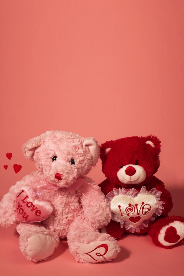 Teddy Love Wallpaper