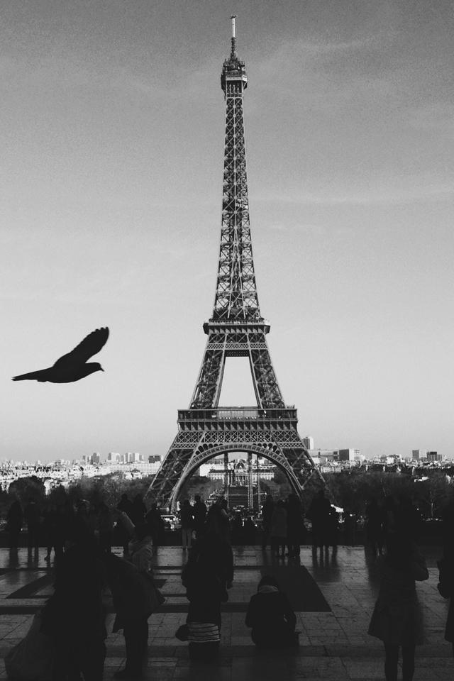 Paris Love Wallpaper