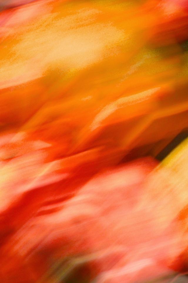 Fire Blur Wallpaper