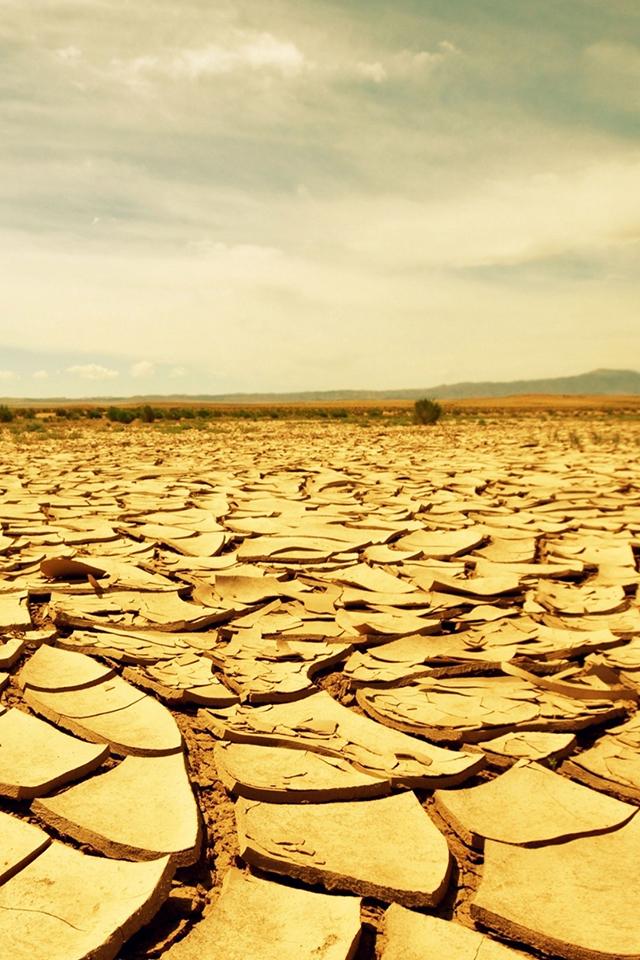Dry Desert Wallpaper