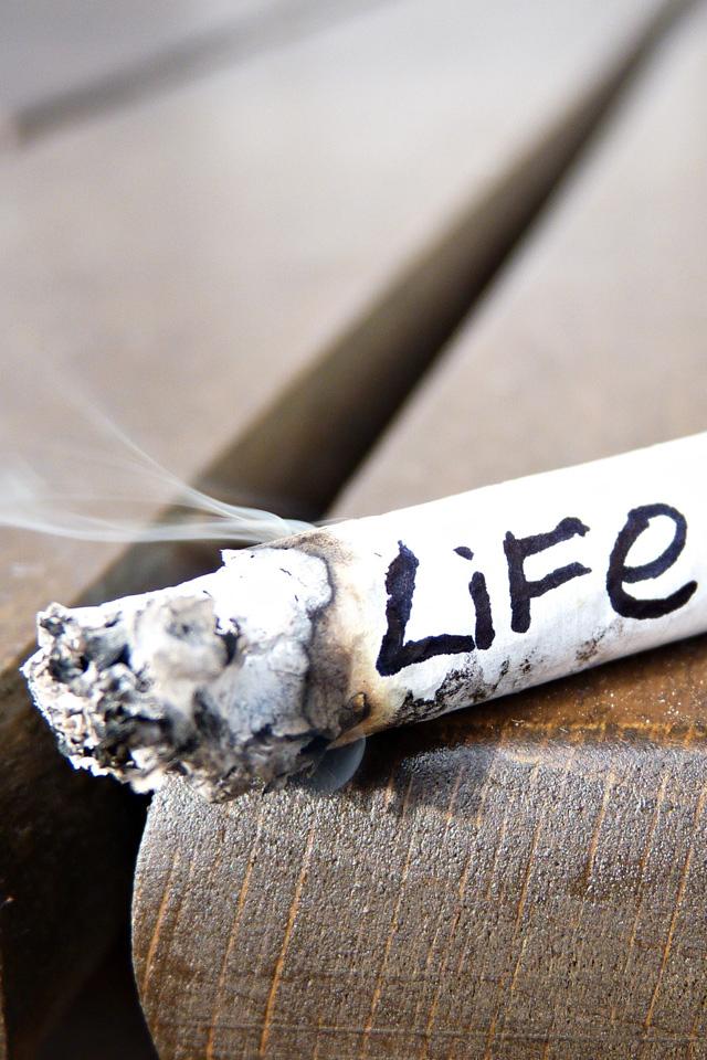Smoke Life Wallpaper