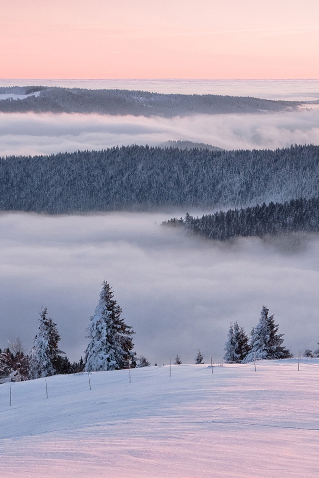 Snow Landscape Wallpaper