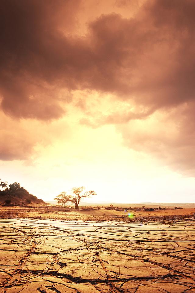 Dry Land Wallpaper