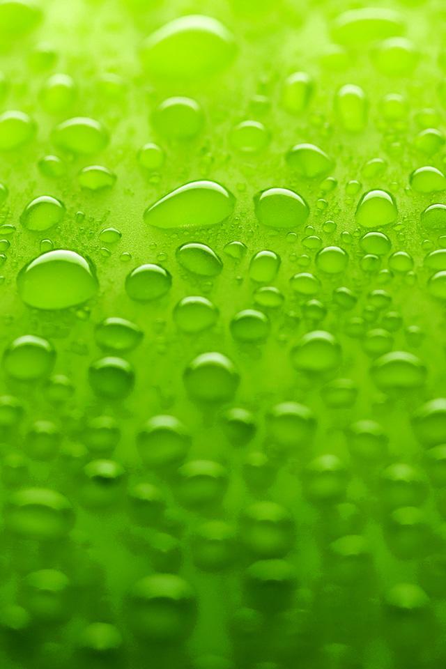 Green Surface Wallpaper