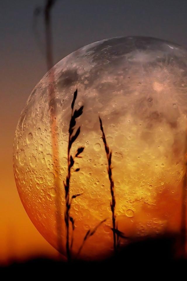 Sunset Moon Wallpaper