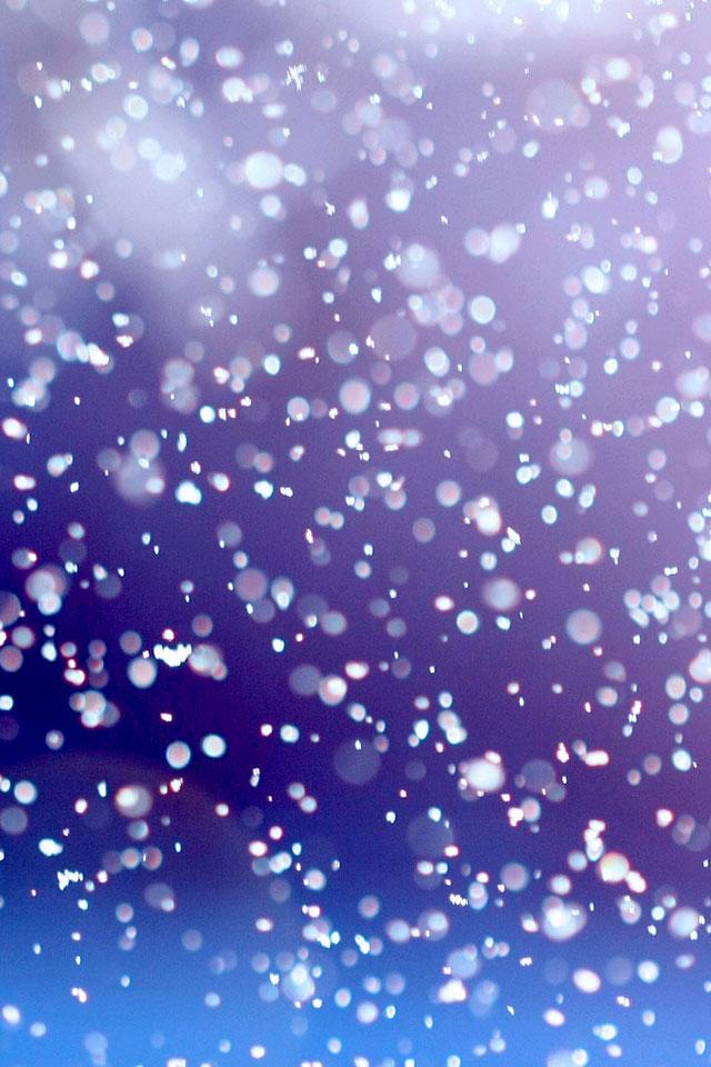 Snow Drops Wallpaper