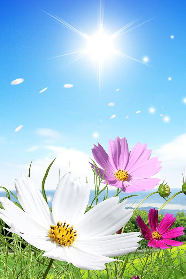 Spring Background Wallpaper