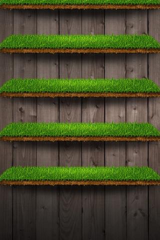 Grassy Shelf