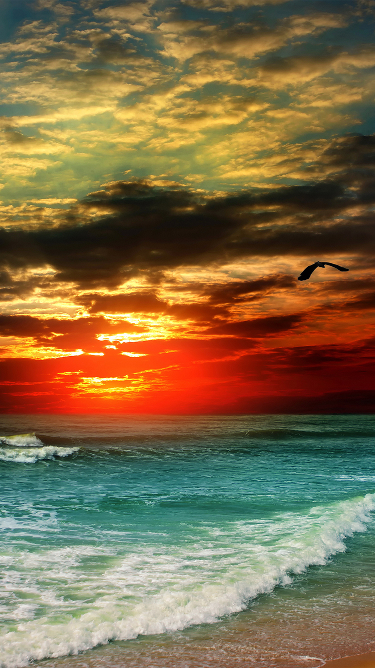 HDR Sunset iPhone Wallpaper HD