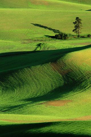 Land View