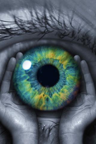 Eye on Hand