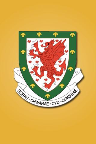 Wales Football Logo