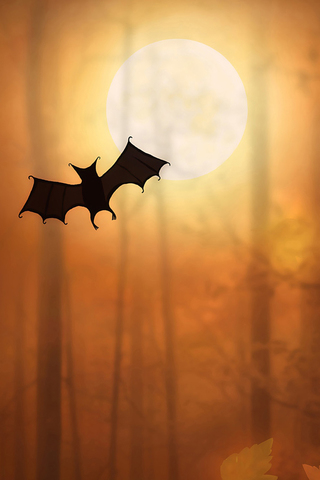 Bat and Moon