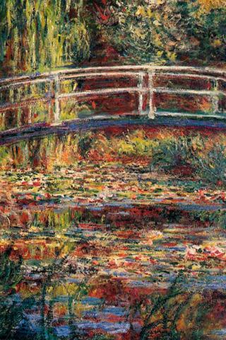 Water Lily Pond Symphony