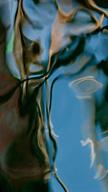 Turquoise Wet ...