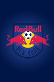 Red Bull New Y...