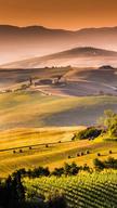 Country Landsc...