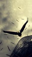 Eagle Rush
