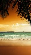 Tropical Parad...