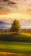 Switzerland Mo...